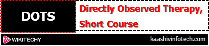 Directly Observed Therapy, Short Course