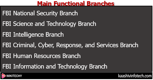 Main Functional Branches
