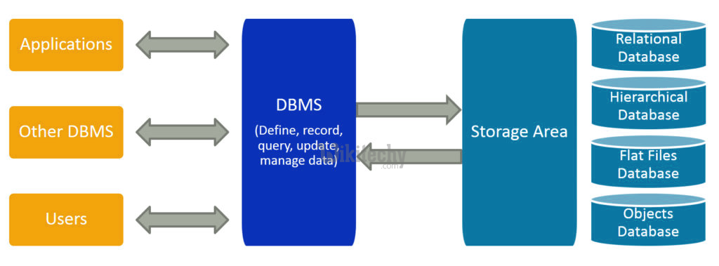What is DBMS